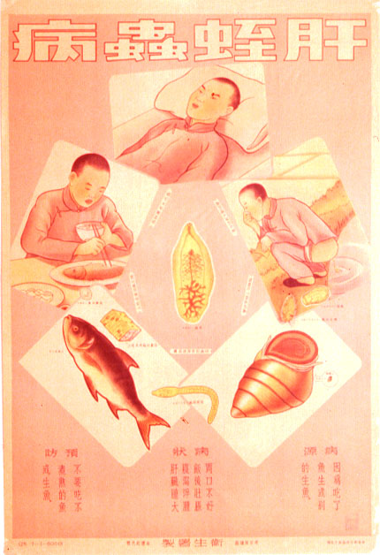 chinese-public-health-poster.jpg