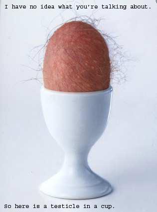 understand-testicle.jpg
