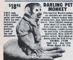 darling-pet