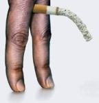 penis-cigarette