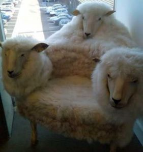resized-sheep-chair2