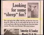 sheep-fun