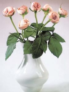 rose-tortellini