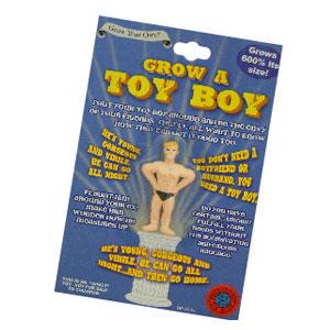 grow-a-toy-boy