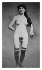 hermaphrodite