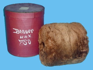 beaver muff box