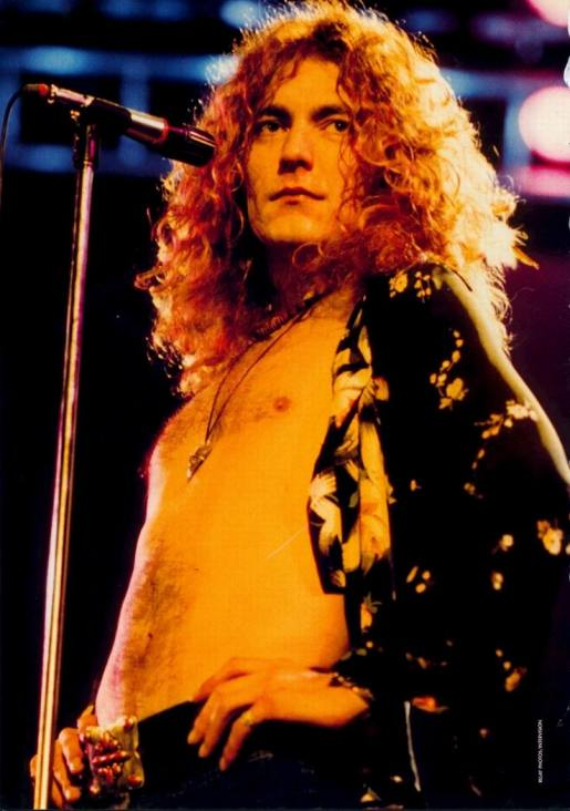 Led Zeppelin Fool In The Rain Hot Dog